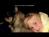 «сынуля и Ко» под музыку из м/ф Анастасия  - Венский вальс (на русском). Picrolla